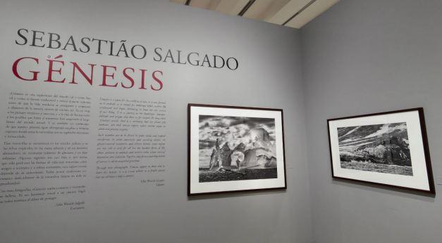 Primera imagen y texto introductorio de Génesis